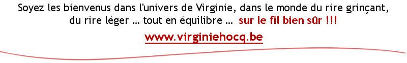 www.virginiehocq.be